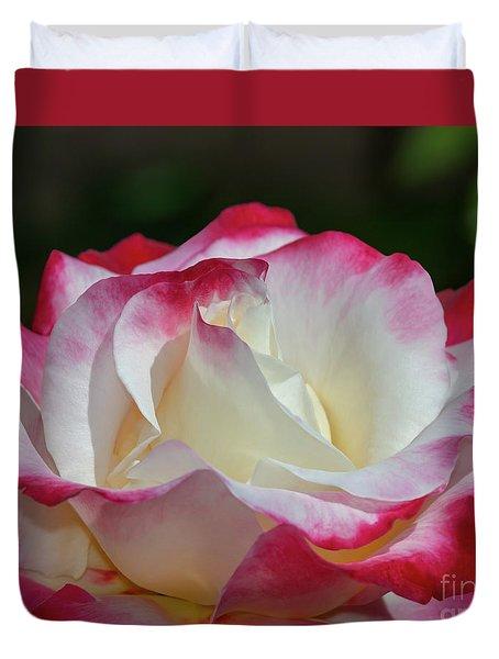 Double Delight Rose 1 Duvet Cover