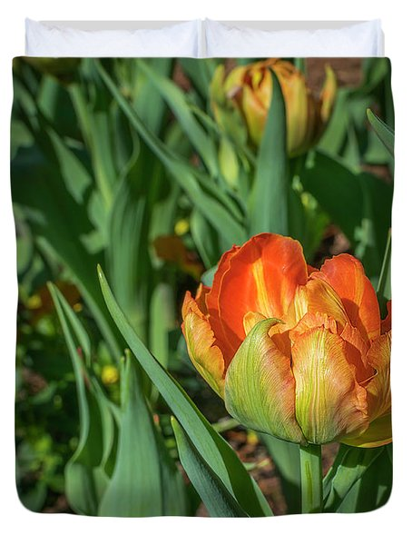 Double Multicolor Tulips Duvet Cover
