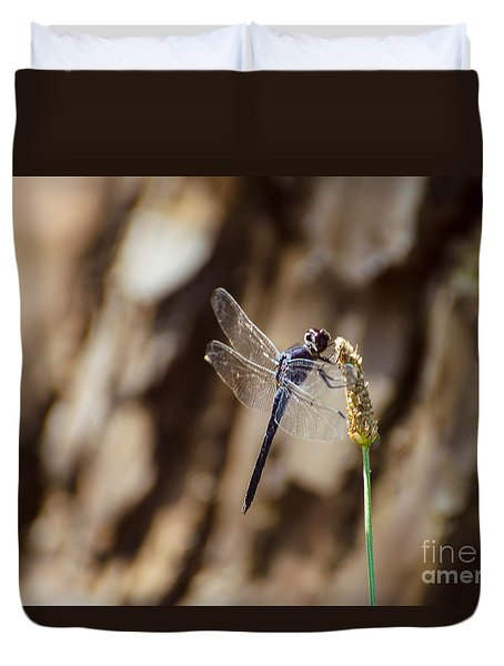 Double Ring Pennant Dragonfly Duvet Cover by Donna Brown