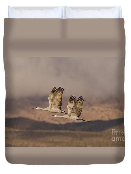 Double Sandhills In The New Mexico Sky Duvet Cover