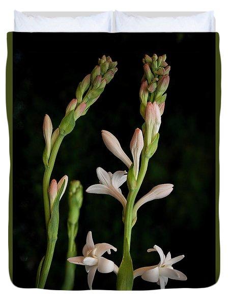 Double Tuberose In Bloom #2 Duvet Cover