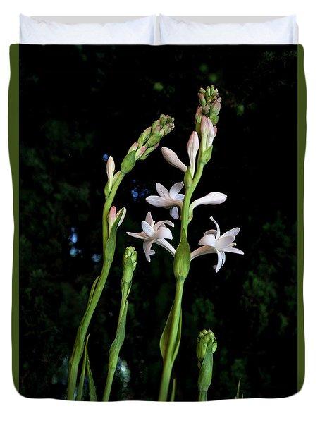 Double Tuberose In Bloom Duvet Cover