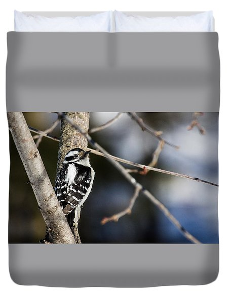 Duvet Cover featuring the photograph Downy Woodpecker by Dan Traun