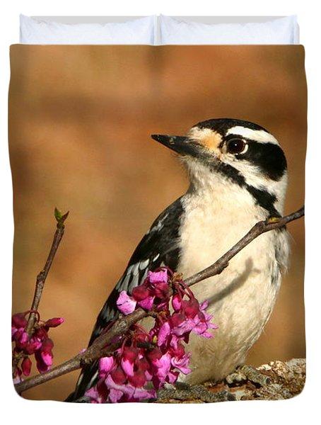 Downy Woodpecker In Spring Duvet Cover