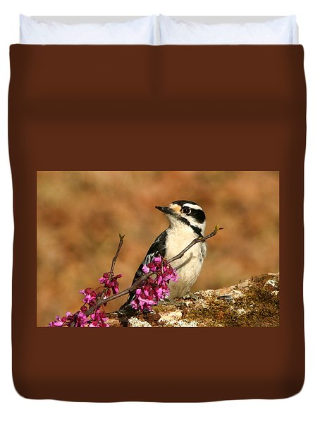 Downy Woodpecker In Spring Duvet Cover by Sheila Brown