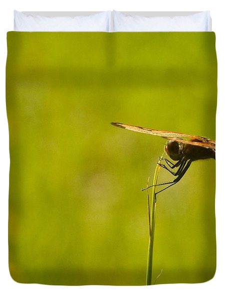 Dragon Fly Poising Duvet Cover
