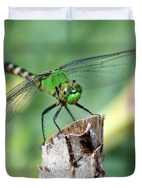 Dragonfly In The Flower Garden Duvet Cover by Carol Groenen