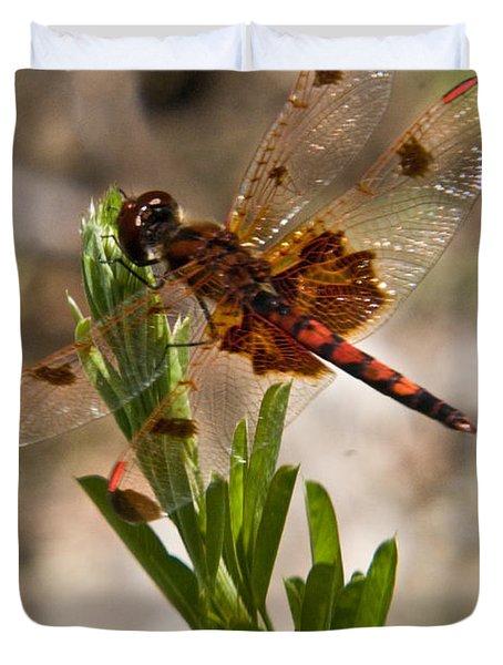 Dragonfly Resting 2 Duvet Cover