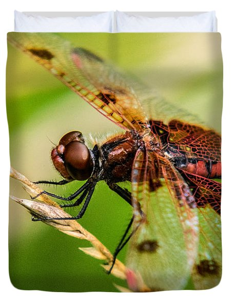 Dragonfly Resting On Grass Seed Duvet Cover