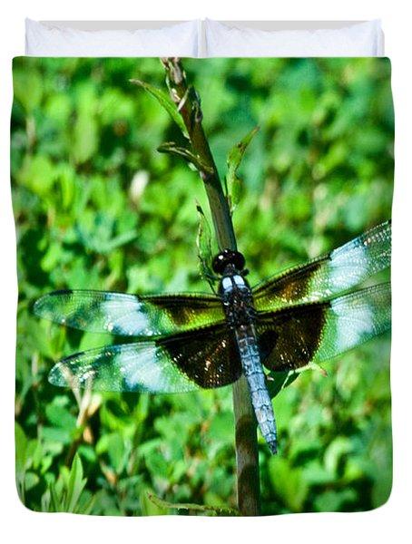 Dragonfly Resting On Stem Duvet Cover