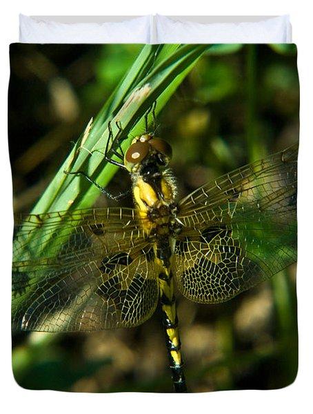 Dragonfly Venation Revealed Duvet Cover