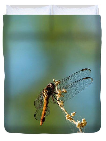 Dragonfly Wings Duvet Cover