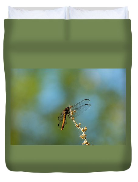 Dragonfly Wings Duvet Cover