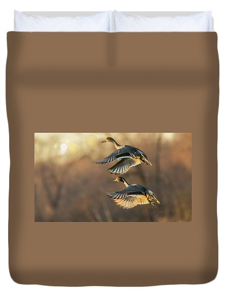 Duvet Cover featuring the photograph Drake And Hen Pintail  by Kelly Marquardt
