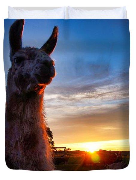Drama Llamas Duvet Cover