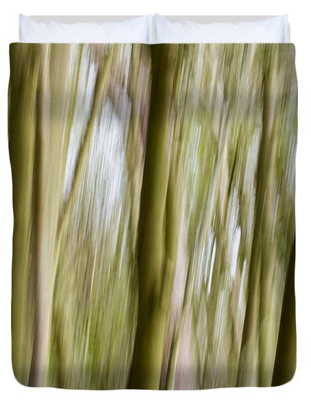 Dream Forest 2 Duvet Cover by Clare Bambers