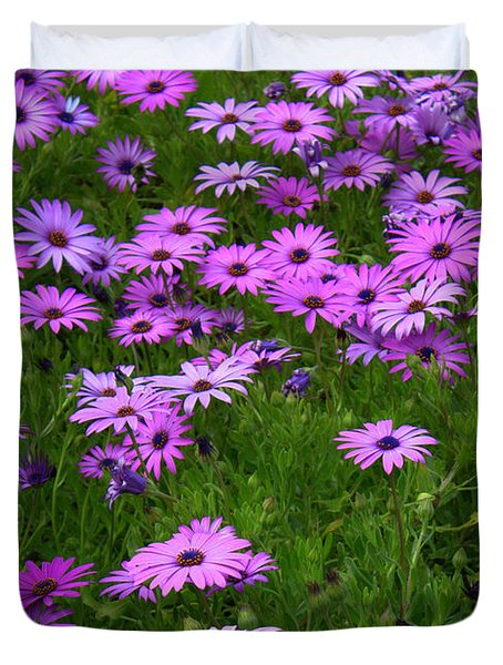 Dreaming Of Purple Daisies  Duvet Cover