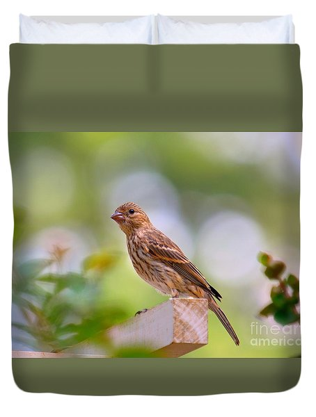 Duvet Cover featuring the photograph Dreamy Finch by Lisa L Silva