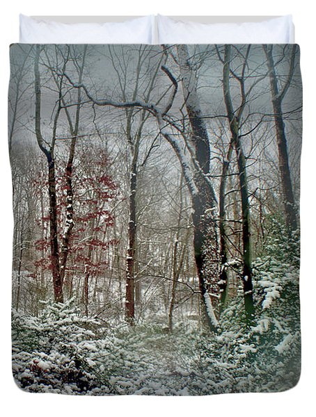 Duvet Cover featuring the photograph Dreamy Snow by Sandy Moulder