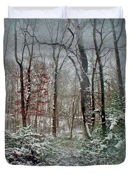 Dreamy Snow Duvet Cover by Sandy Moulder