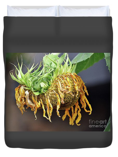 Dried Sunflower Duvet Cover