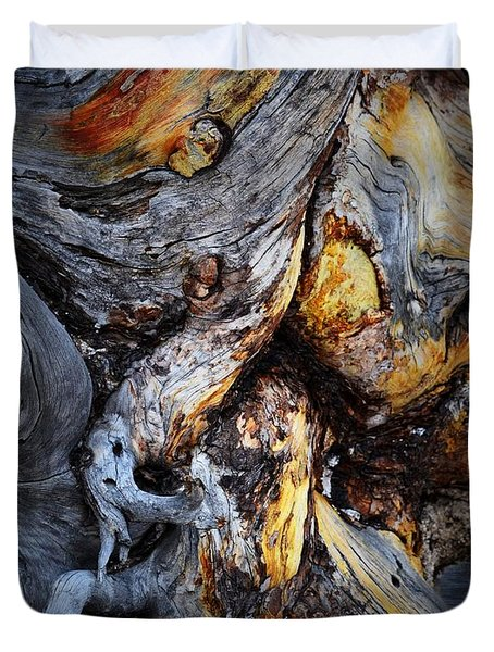 Duvet Cover featuring the photograph Driftwood Abstract by Nadalyn Larsen