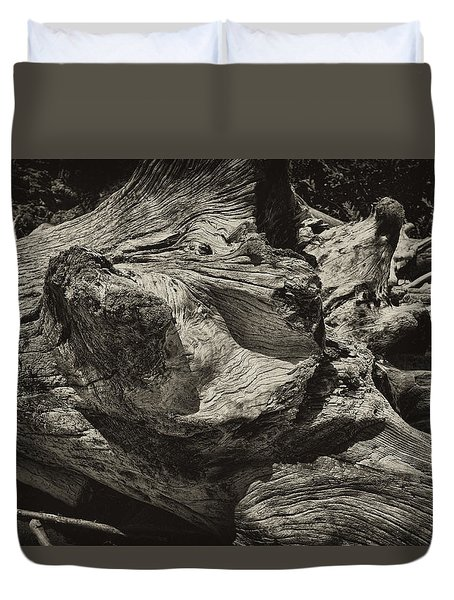Duvet Cover featuring the photograph Driftwood by Hugh Smith
