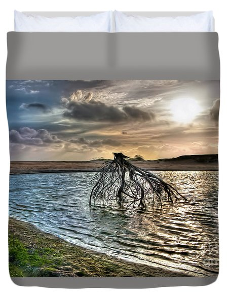 Driftwood In A Tide Pool Outer Banks Ap Duvet Cover by Dan Carmichael