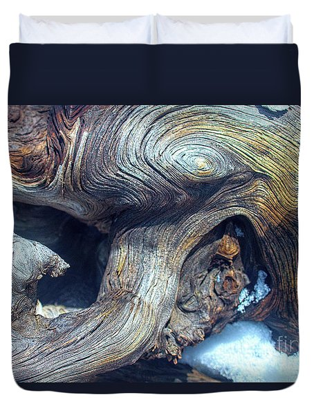 Driftwood Swirls Duvet Cover by Todd Breitling