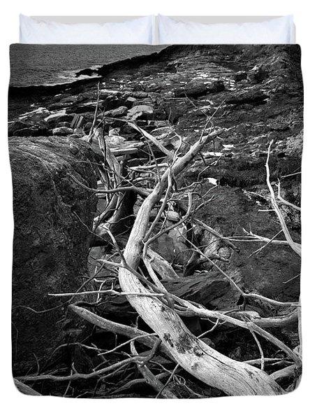 Driftwood Tree, La Verna Preserve, Bristol, Maine  -20999-30003 Duvet Cover