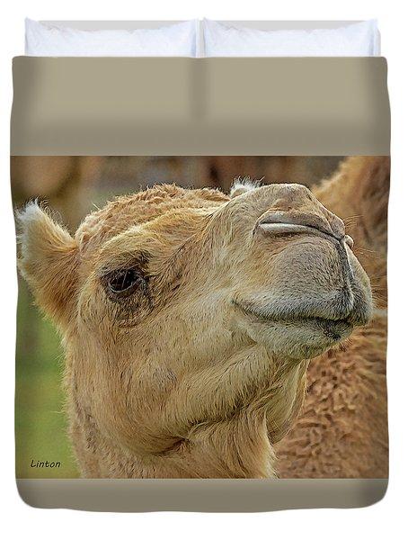 Dromedary Or Arabian Camel Duvet Cover