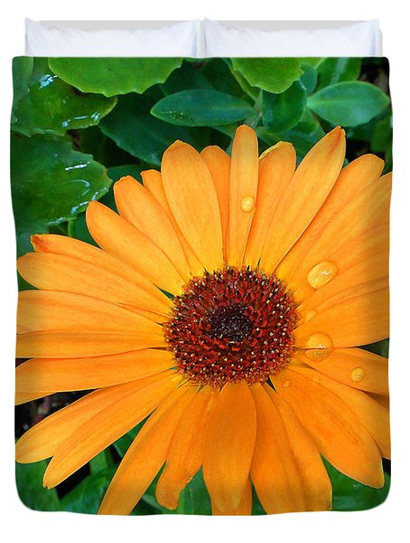 Droplets On A Daisy Duvet Cover by Sue Melvin