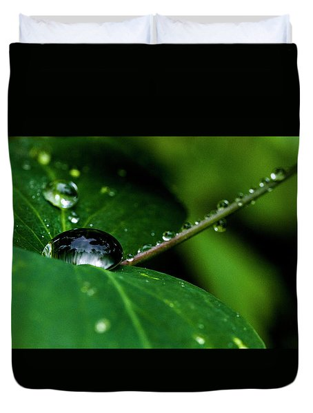 Duvet Cover featuring the photograph Droplets On Stem And Leaves by Darcy Michaelchuk