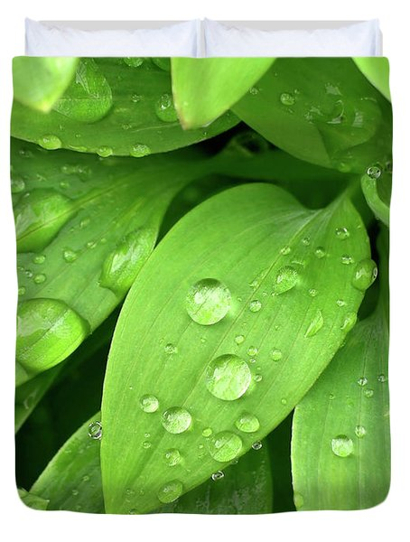Drops On Leaves Duvet Cover by Carlos Caetano