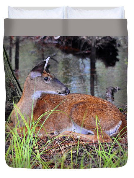 Duvet Cover featuring the photograph Drowsy Deer by Al Powell Photography USA