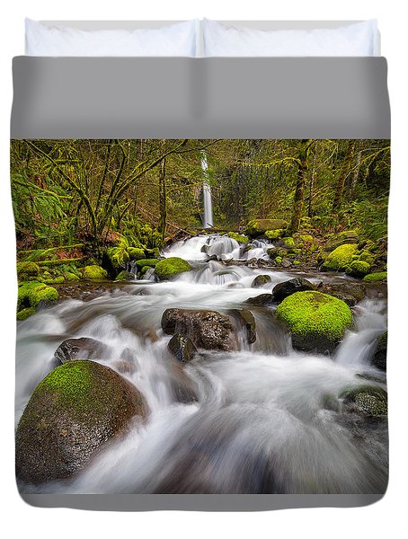 Dry Creek Falls In Spring Duvet Cover by David Gn