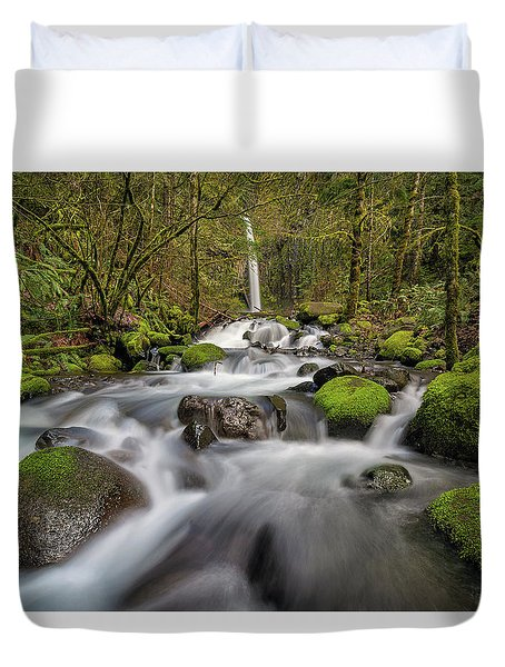 Dry Creek Falls In Springtime Duvet Cover by David Gn