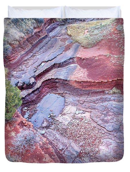 Dry Stream Canyon Areial View Duvet Cover