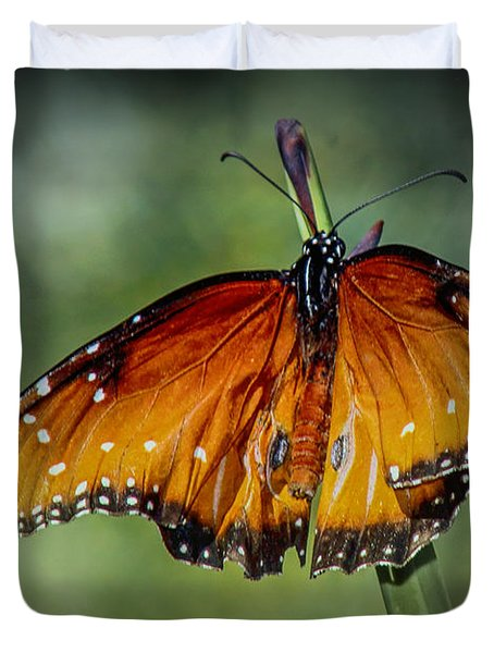 Duvet Cover featuring the photograph Drying Wings by Elaine Malott