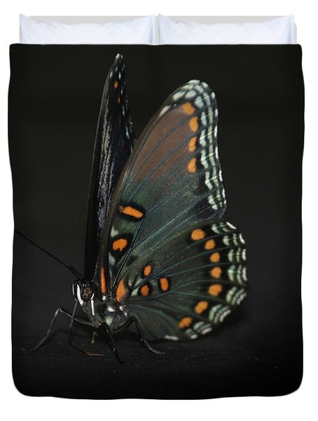 Drying Wings Duvet Cover by Judy Hall-Folde