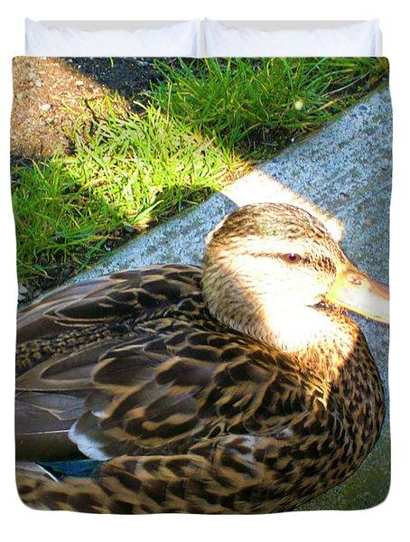 Duck Melanie Tweed In  The Sun Duvet Cover