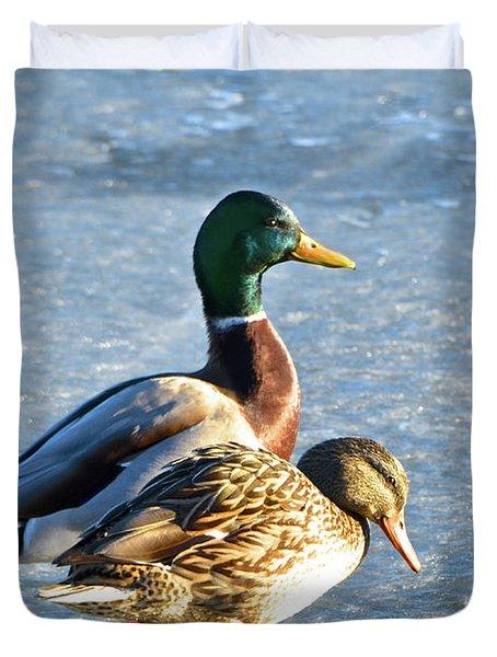 Duck Pair On Frozen Lake Duvet Cover