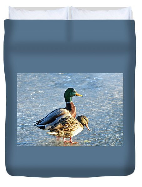 Duck Pair On Frozen Lake Duvet Cover