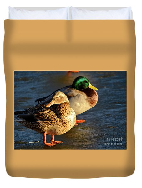 Duck Pair Sunbathing On Frozen Lake Duvet Cover