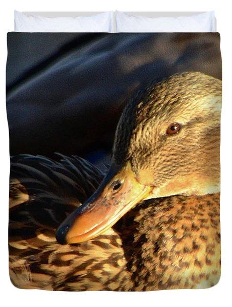 Duck Sunbathing Duvet Cover
