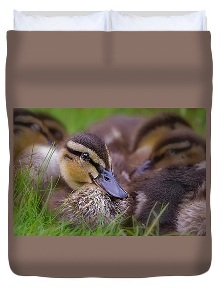Duvet Cover featuring the photograph Ducklings Cuddling by Susan Candelario