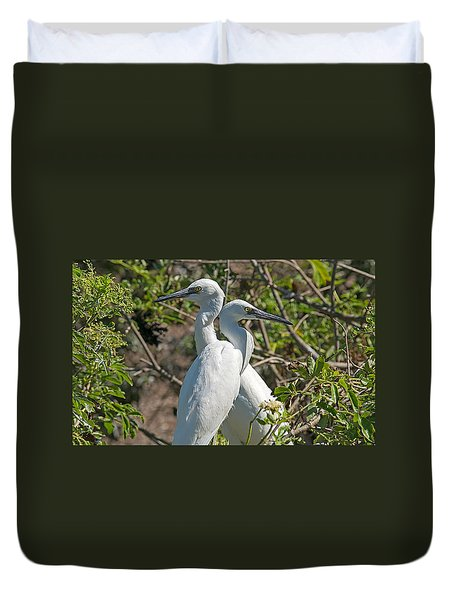 Dueling Egrets Duvet Cover by Kenneth Albin