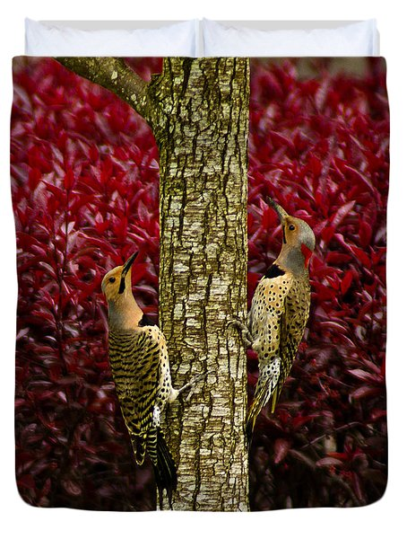 Dueling Woodpeckers Duvet Cover