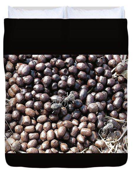 Dung Spiders Duvet Cover