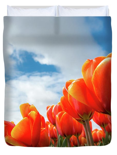 Dutch Tulips Near Keukenhof Duvet Cover